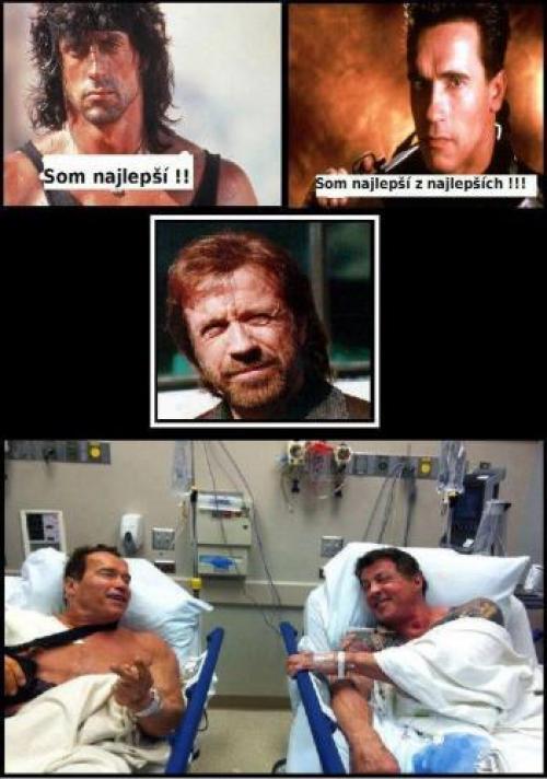 Chuck Norris Vs. Arnold & Sylvester