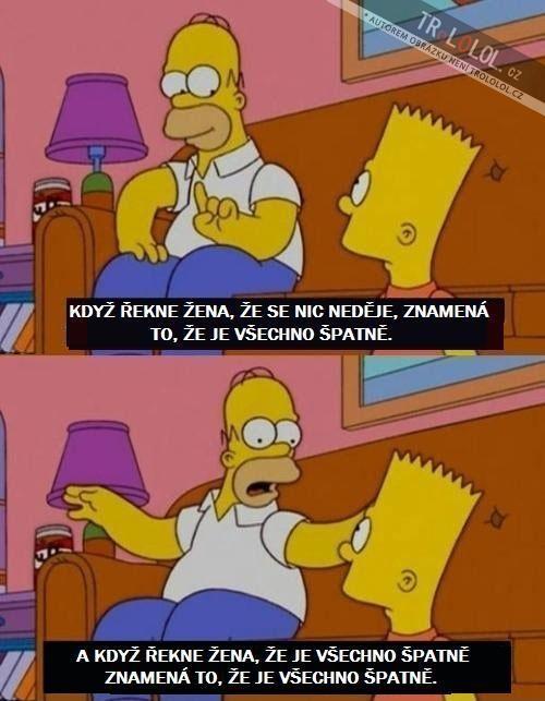 Homer Simpson radí