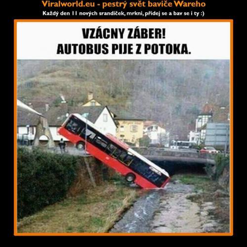 Vzácný záběr autobusu