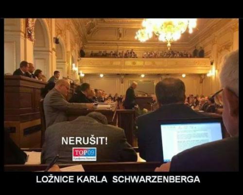 Schwarzenberg v práci