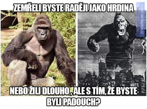 Padouch