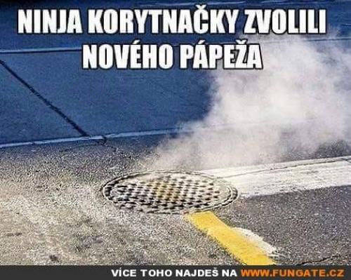 Ninja korytnačky zvolili nového papeže