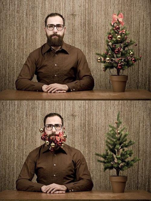 Vánoční ozdoby jako porost