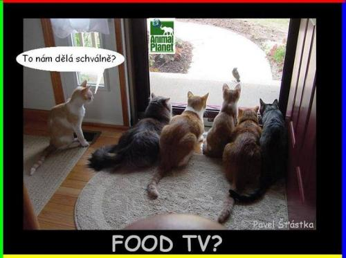 Food TV