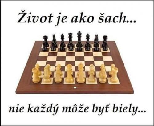 ivot je jako šachy