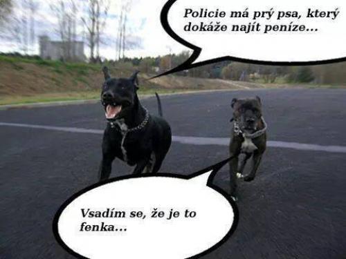 Fenka
