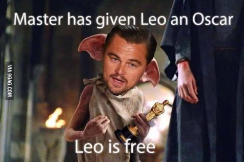 Leo is free!