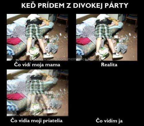 Divoká párty :D