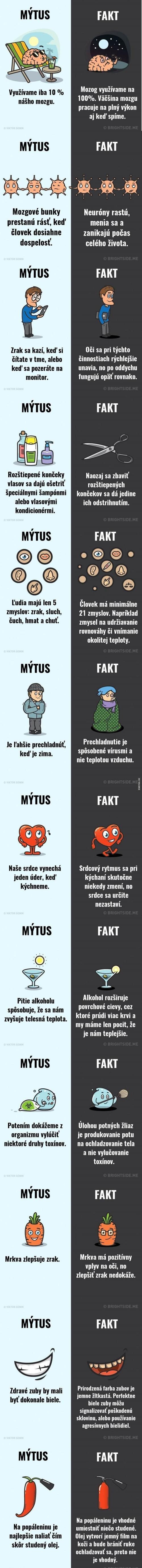 12 mýtů a faktů