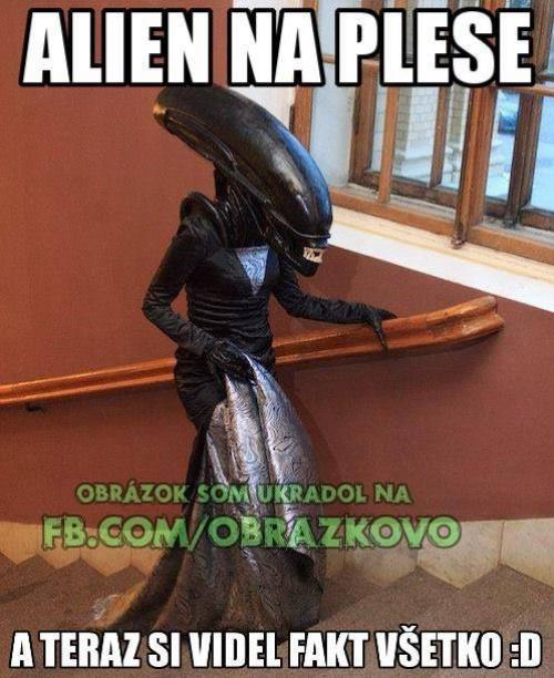Alien na plese:D