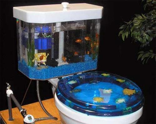 WC Akvárium