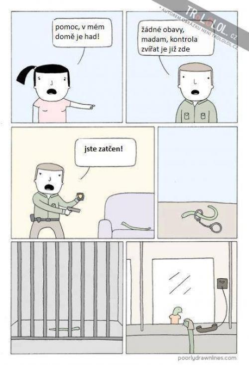 Zatýkání hada