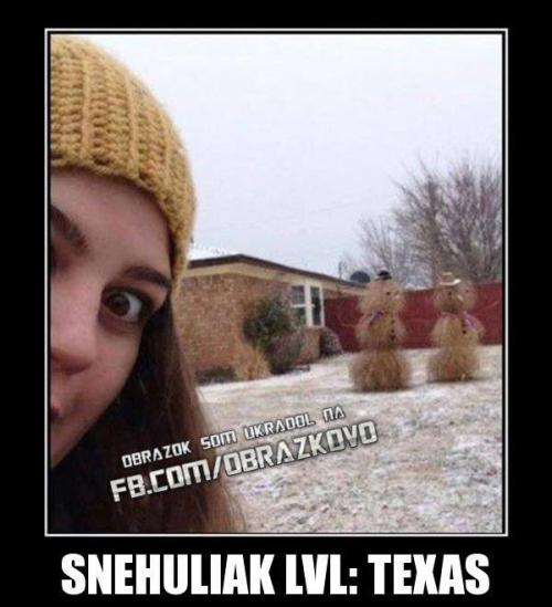 Sněhulák lvl Texas :D