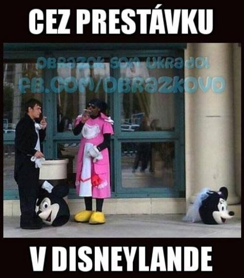 Disneyland :D