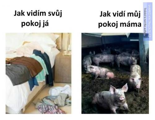 Jak vidím svůj pokoj já vs. jak vidí můj pokoj máma