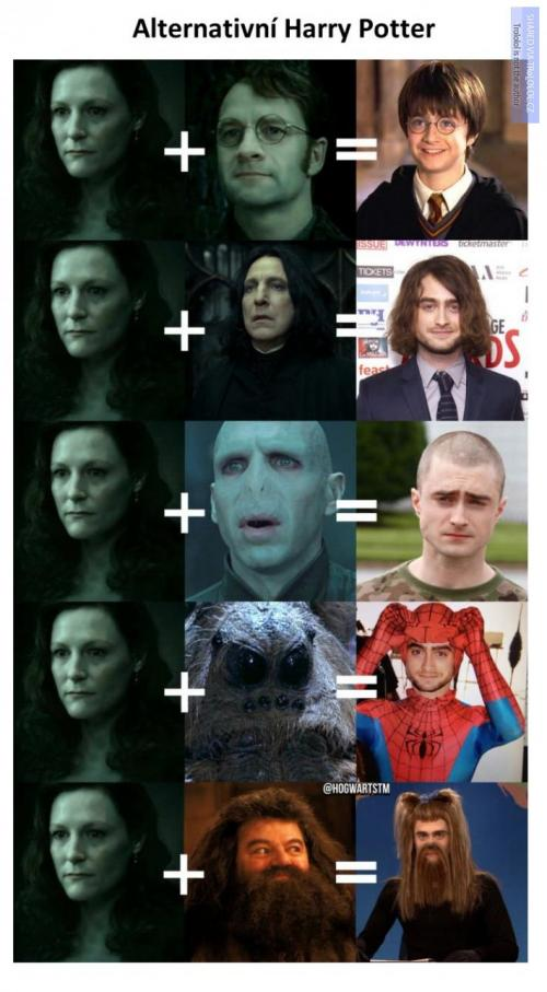Alternativní Harry Potter