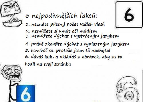 6 faktů