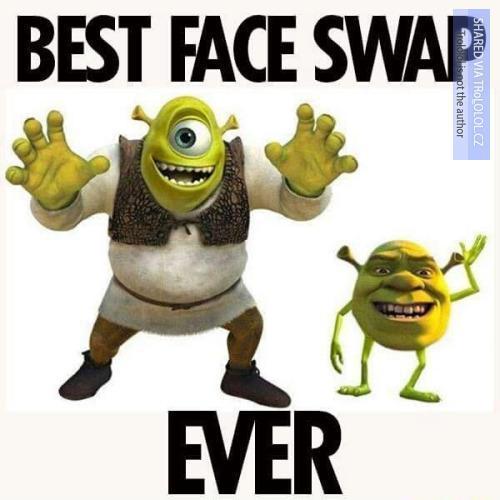 Nejlepší face swap