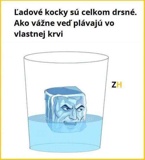 Ledové kostky