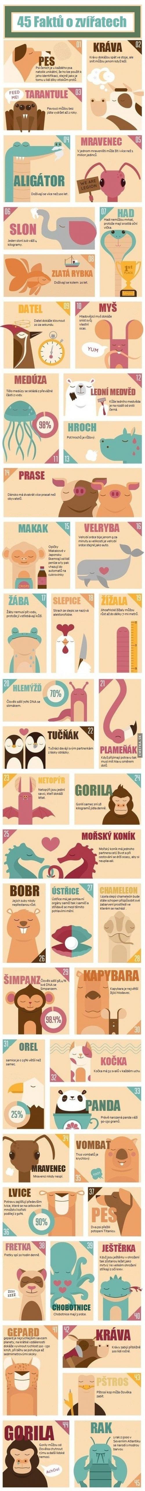 45 faktů o zvířatech