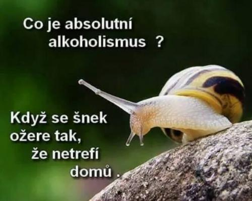 Absolutní alkoholismus