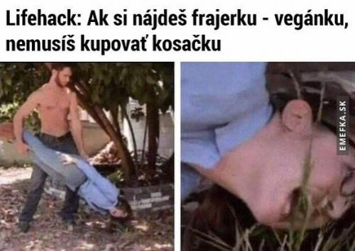 Sekačka