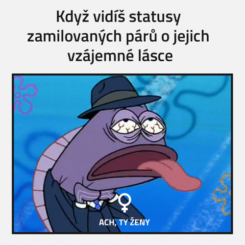 Statusy