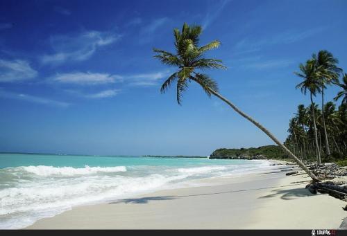 Bahami beach