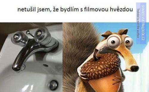 Filmová hvězda