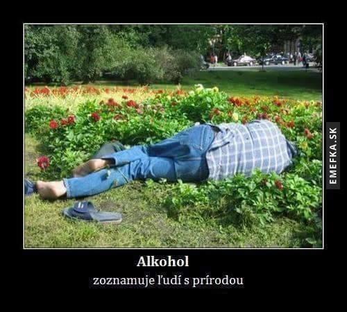 Alkohol je užitečný