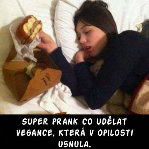 Jak dostat vegana