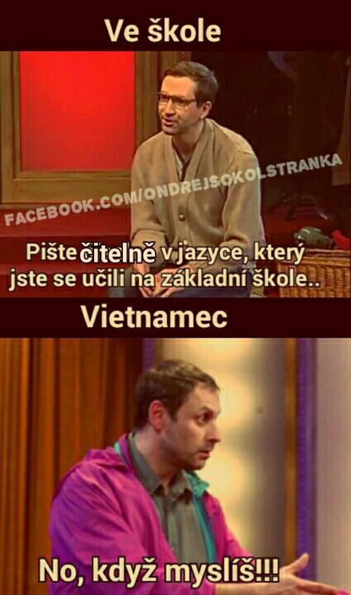 Vietnamec