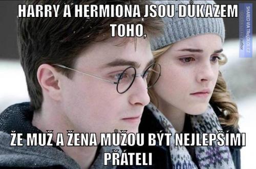 Harry a Hermiona jsou důkazem toho, že..
