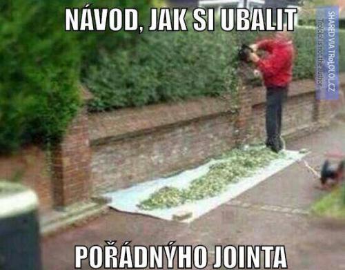 Pořádný joint
