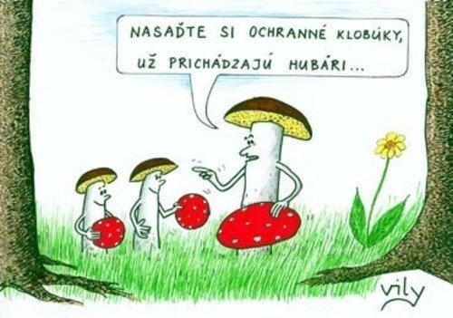 Bojkot houbařské sezóny