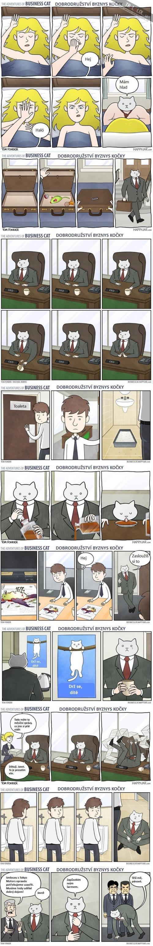 To nejlepší z Byznys kočky!