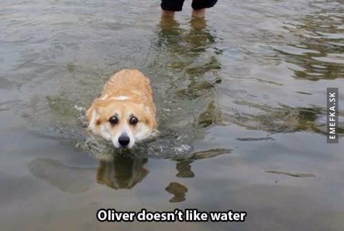 Oliver nemá rád vodu