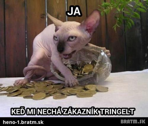 Peníze, peníze!!