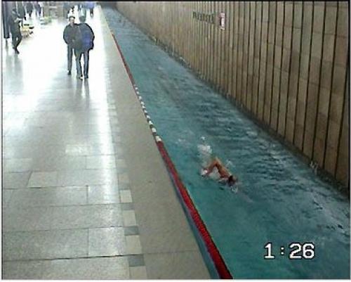 LOH Londýn plavání