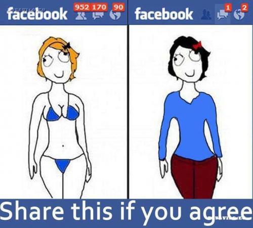 Holky a FB