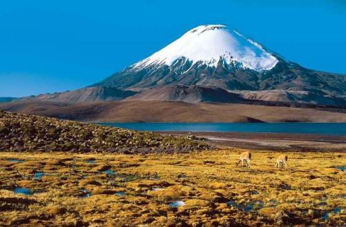 Nejvyšší sopka