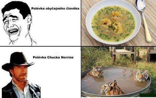 Polívka