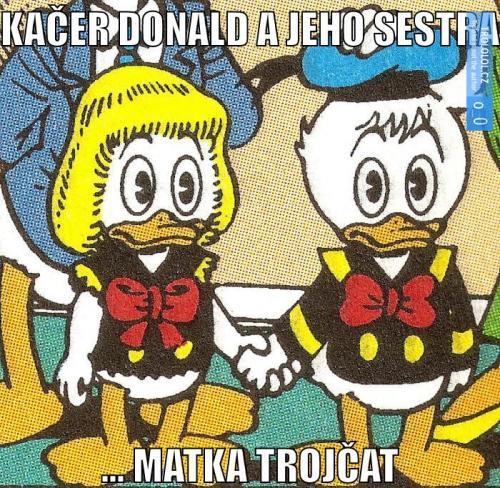 Kačer Donald a jeho sestra