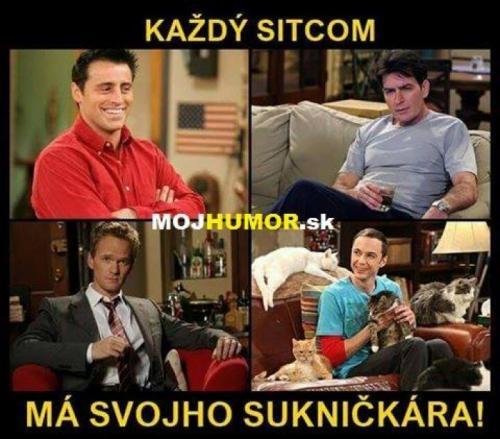 Každý sitcom