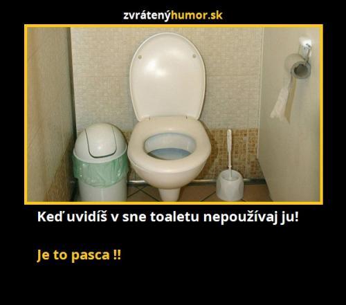 Toaleta ve snu
