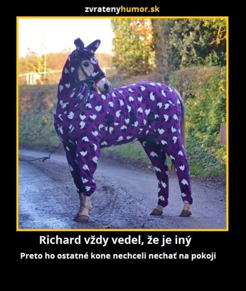 Richard to vždy věděl