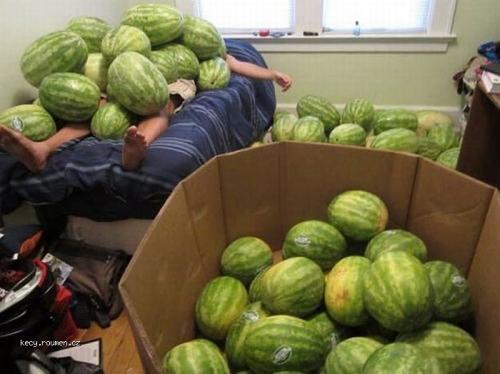 melon lover