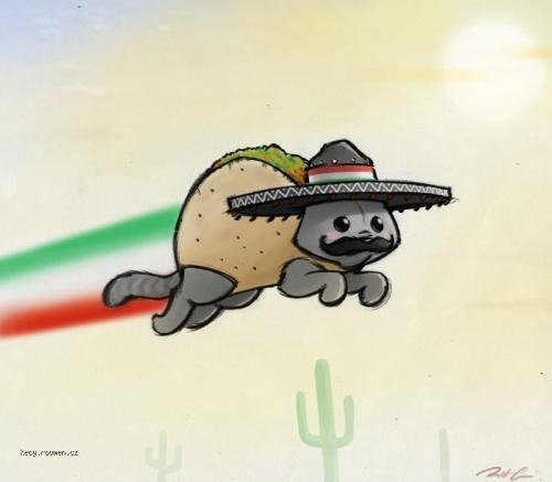 mexican nyan cat by robthedoodlerd47aul5