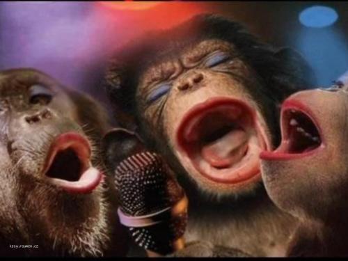 uci se zpivat ceskou hymnu