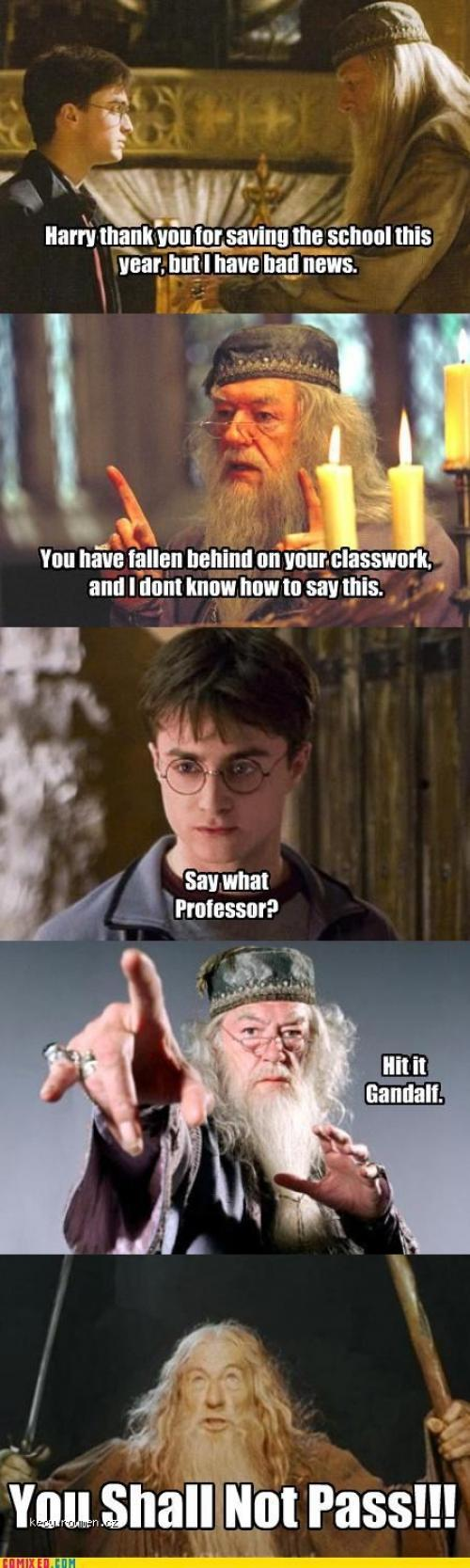 potter fails